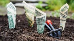 Financial Translations